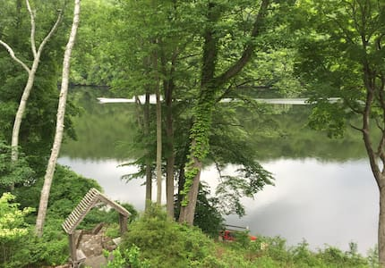 Lakeside surrounded by State Forest