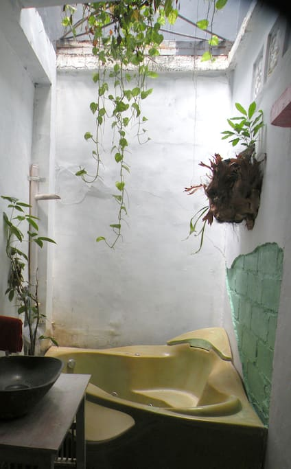 private bathroom has hanging plants and is semi outdoor