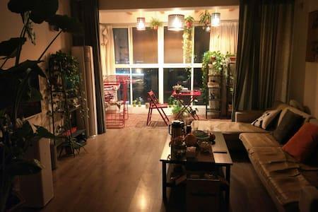 地铁站和高铁站,高速口附近温馨家庭公寓,免费提供地下车位,单间160 - Zhengzhou
