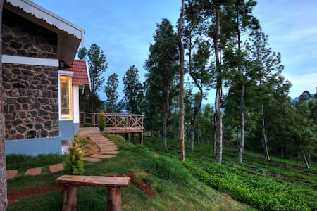 Blue Ridge Stone Cottage in Ketti Valley Lower - Villa