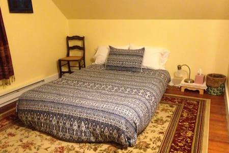 Cozy, quiet room in 1890s Victorian home w airbed - Apartment