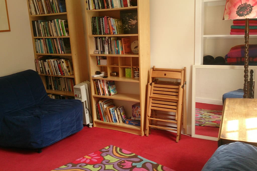 The front room - with the single fold-down bed and bookshelves (lots of anthropology books here and some kids books and games too).