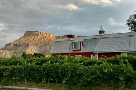 Beautiful Vineyard Barn House - Дом