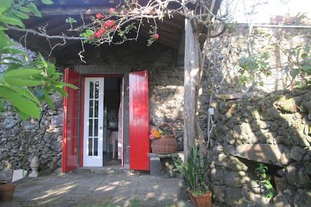 Quinta dos Carvalhos — Casa Rosa - Rumah
