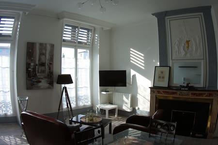 Vienne, centre historique, appartement de standing - Vienne
