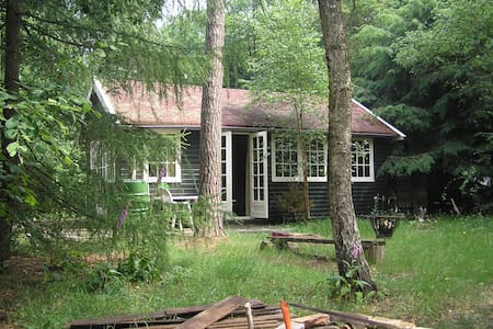 Forest home with big woodgarden