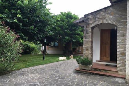Le camere di Maria Grazia 2 - House