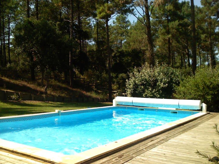 Villa 4 chambres avec piscine villas louer moliets for Piscine bois 10x5