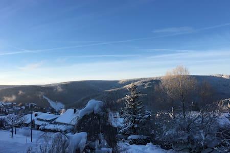 Winter in Titisee-Neustadt - Titisee-Neustadt - Apartment