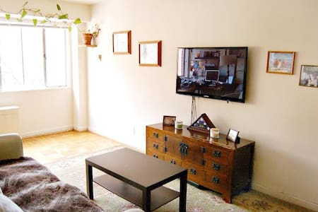 Spacious one bedroom in central DC - Washington - Apartment
