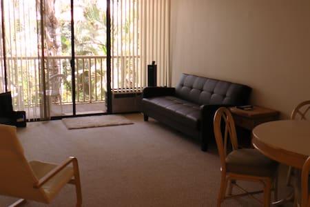 John's Super-Duper Couch