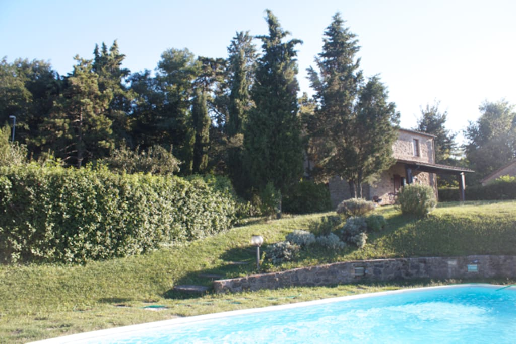 View from the swimming pool