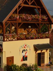 Charmant appartement avec terrasse - Zellwiller - House