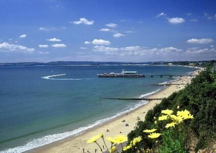 Beautiful 4DB house 10 min to beach - Bournemouth - House