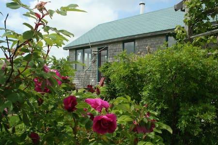 Ivy Cottage, South Side Harbour - Dům