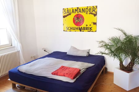Nice spacious room in citycenter - Pis