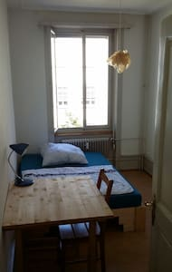 Charming private room in Basel City - Leilighet
