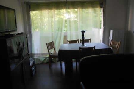 Appart-Two room + Private kitchen well equiped- F2 - Apartment