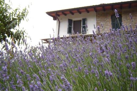 Casa dellAbbondanza bosco incantato - Vigoleno - Inap sarapan