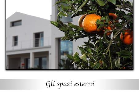 Scent of orange blossom - Santa Venerina