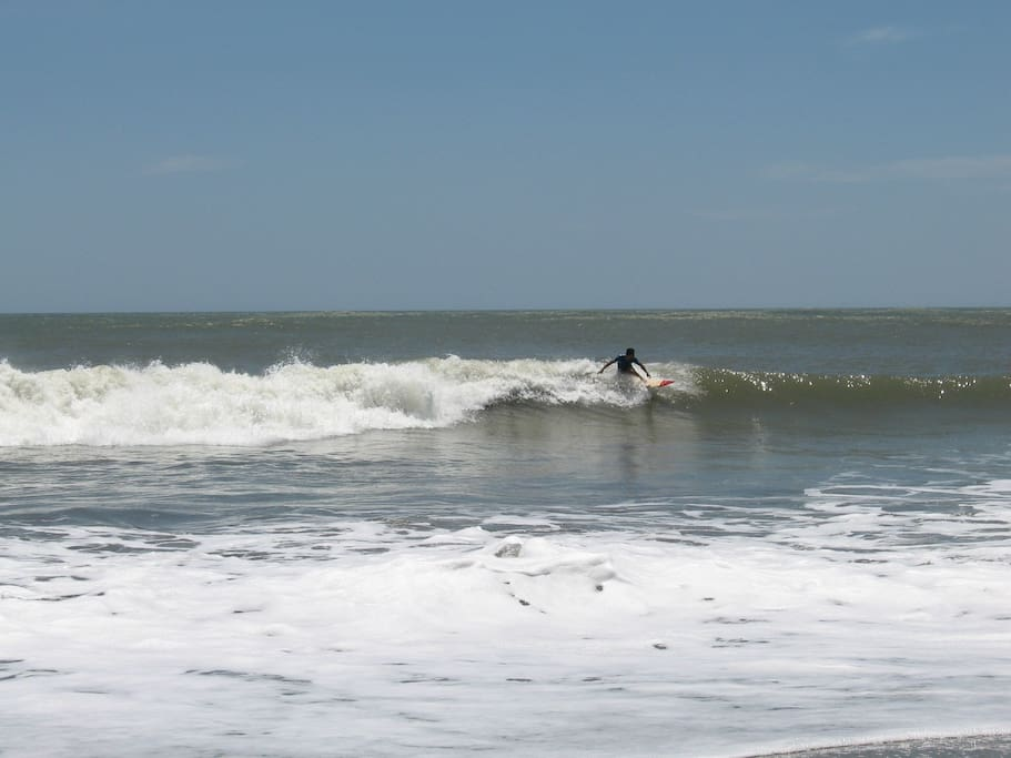 Surf at our local beaches on the Pacific.