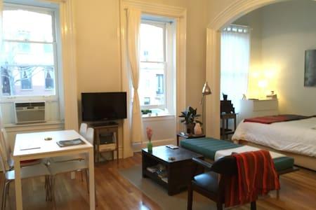 Spacious, sunny studio. - Brooklyn - Apartment