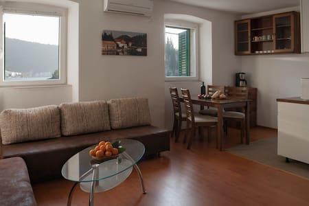 Comfortable apartments in Croatia. - Blace - Rumah