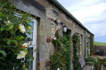 Stella's cottage - Fife - Hus