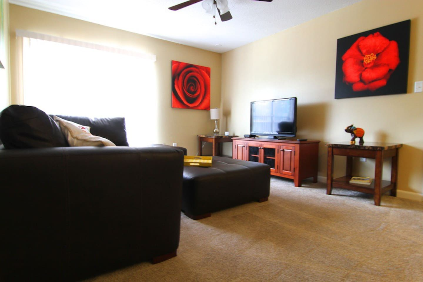 Nicely decorated with owner's photographs on canvas, comfortable furniture, flat-screen TV, wireless internet, cable, etc...