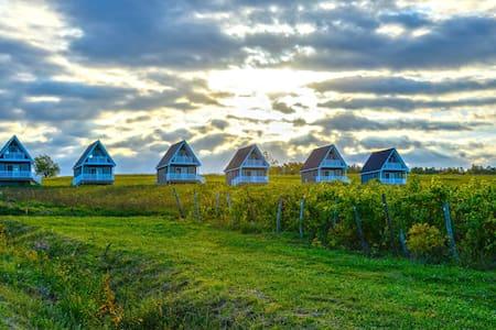 The Vineyard Villas 4 - Vila