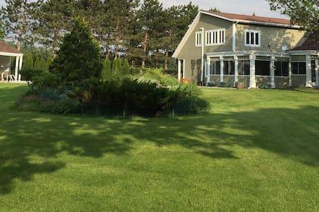 Oasis, verdure, beauté et sérénité - Podkroví