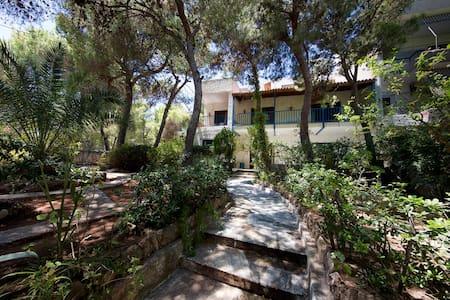 Villa Mati - House