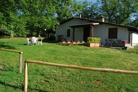 "Bed and Breakfast ""Il Castagneto"" - Bed & Breakfast"