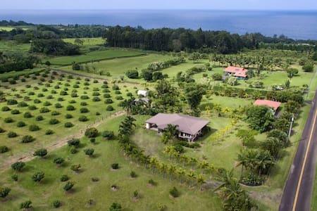 Family Fruit Farm - Casa