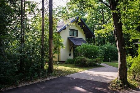 Drulovka house - central Slovenia - Kranj - Dům