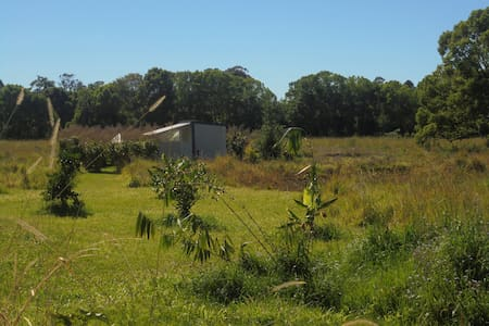 "Cabin on ""Tigergrass Island"" - Mullumbimby - Andre"