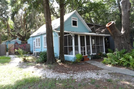 Cottage in Heart of Safety Harbor - Safety Harbor - House