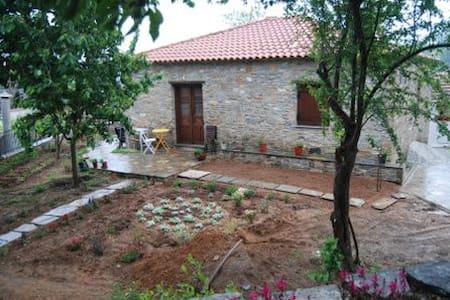 Lafkos Harmony House - Lavkos - Rumah