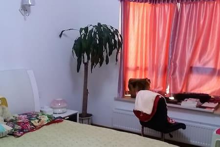 近观武汉理工大学,远眺长江大学的阳光房 - Appartement