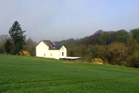 Studio entre champs et bois. Nature - Namur - Byt