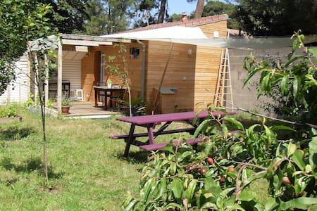 Studio de charme avec jardin. - Apartment