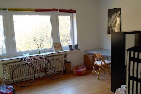 Großes, helles und möbliertes Zimmer am Ponttor - Pis