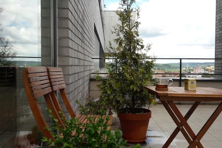Spacious apartment, private terrace, amazing view! - Vilnius - Apartment