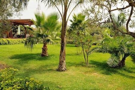 "Beautiful Villa ""The Olive House"" - Melilli - Villa"