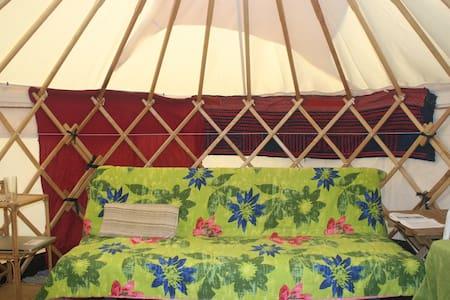 Suburban yurt