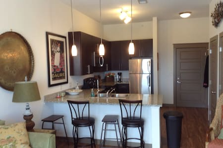Downtown, 1 bed apt in 2700 Capitol Park Bldg - Apartment