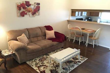 Cozy Plano Apartment - Ortak mülk