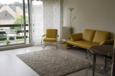 Lovely apartment close to the center - Leuven - Apartment
