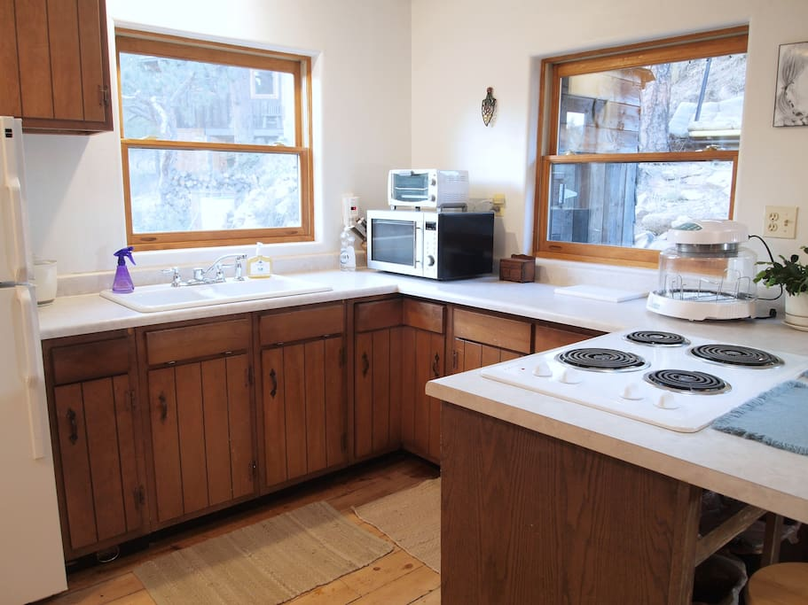 The kitchen has a cooktop, a microwave convection oven, a toaster oven, a New Wave oven and a view of the wildlife.