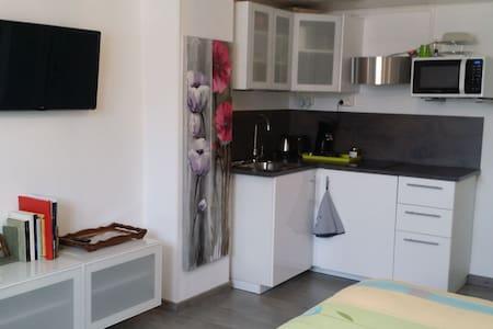 Joli studio neuf proche  Strasbourg - Maison